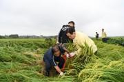 예산군, '농업인 월급제' 확대 추진...3월 31일까지 지역농협에 신청